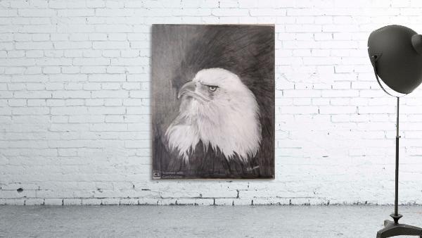 Eagle_DKS