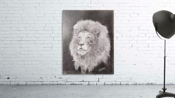 Lion_DKS