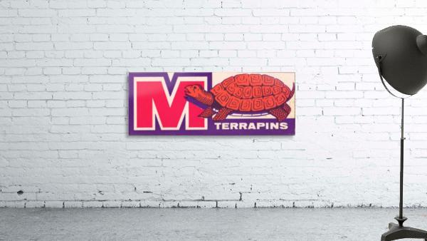 1957 Maryland Terrapin Art Reproduction