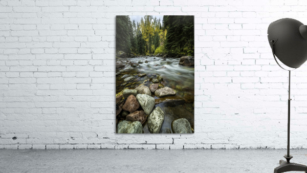 Rocky Mountain Stream II