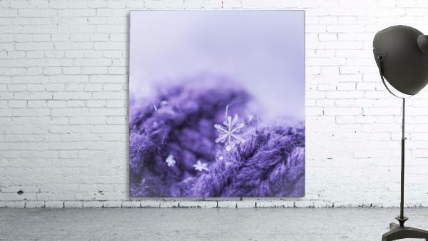 Purple Snowflakes