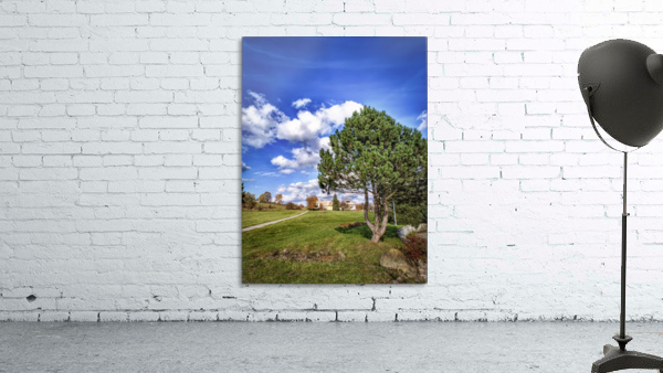 Tree and blue sky with clouds