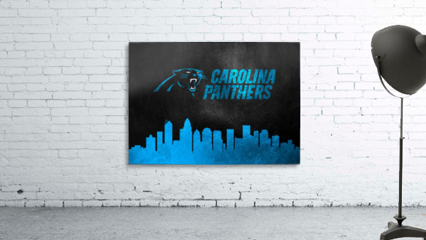 Carolina Panthers Skyline