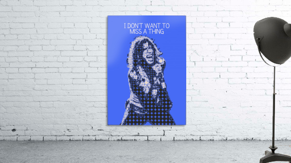 I Dont Want to Miss a Thing   Steven Tyler