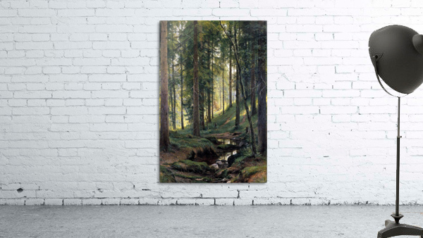 Stream by a forest slope
