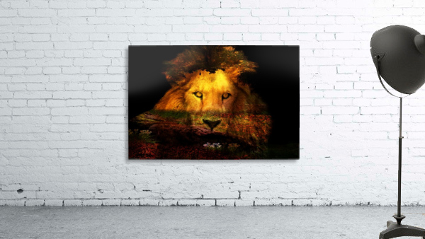 The Lion Watches