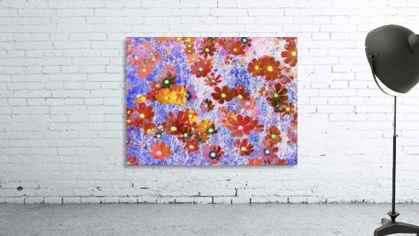 Cosmos Flowers Brown
