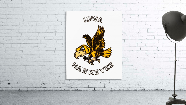 Vintage Iowa Hawkeyes Art
