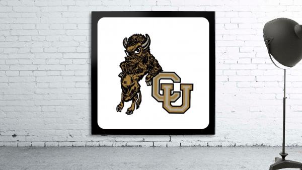 vintage college mascots colorado buffalo art