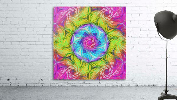 Spirals Kaleidoscope Ciclamen Lame