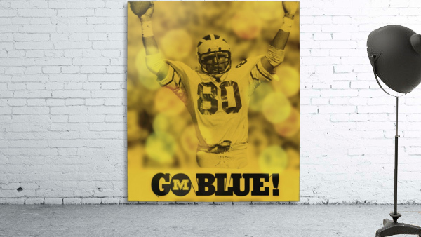 1979 michigan football go blue