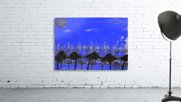 Trees vs sun blue