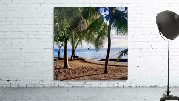Sailboat And Palms