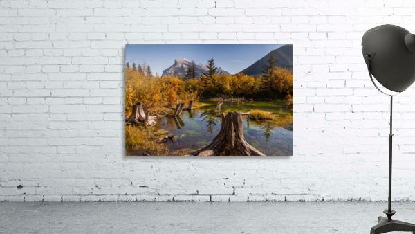 Vermilion Lakes Pond IMG_7045