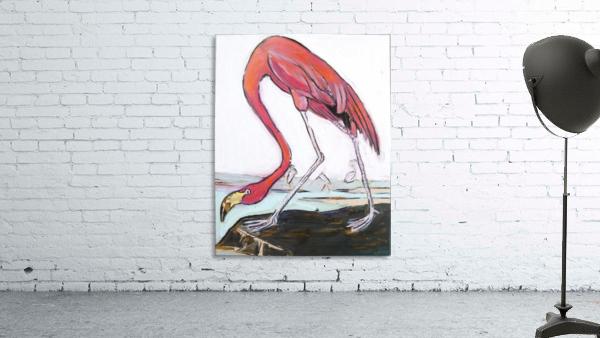 Louisiana Flamingo Study on Wood