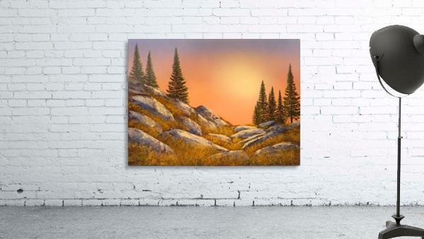 Sunset Spruces