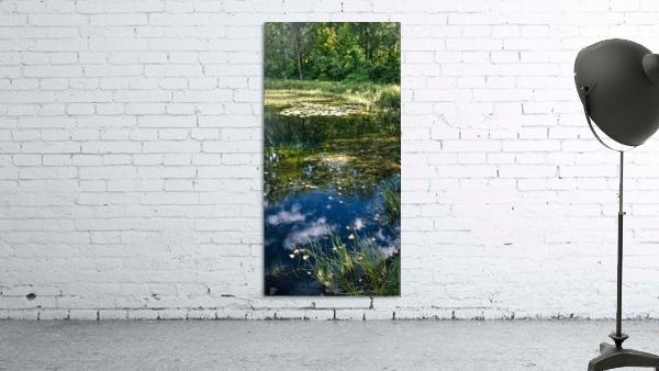 Monet style 2