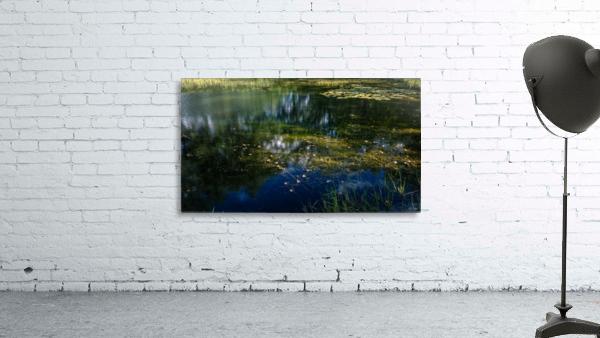 Monet style 3