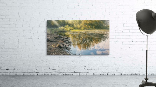 Monet style 4