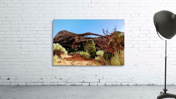 Landscape Arch I