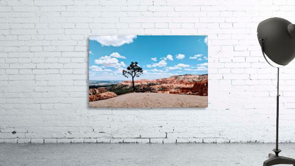 Bryce Canyon V