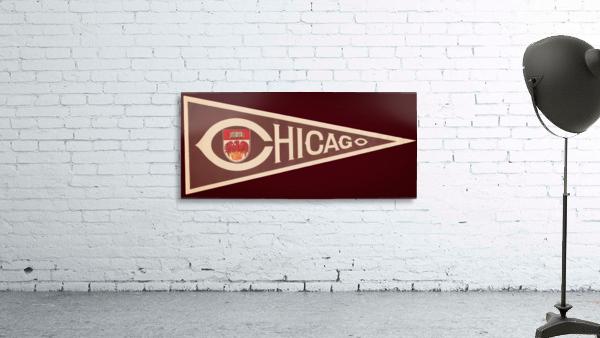 1950s University of Chicago