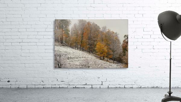 October Snow Canaan Valley WVa