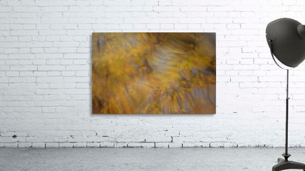 Autumnal swirls reflections 2
