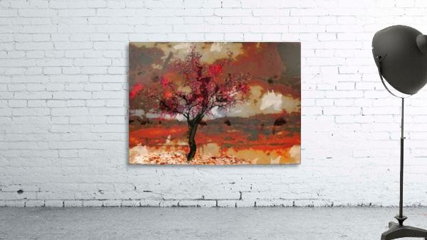 Summer cherry tree