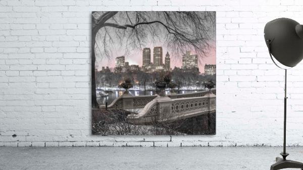 Central park with Manhattan skyline, New York