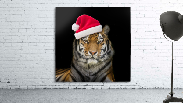 Tiger with Santa hat