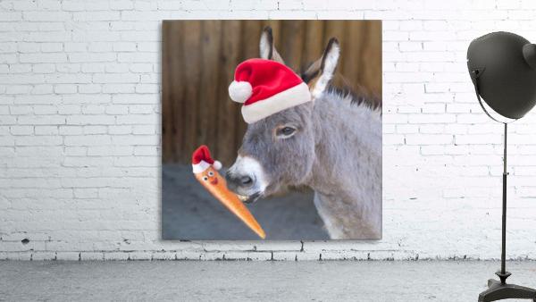 Donkey with Santa hat