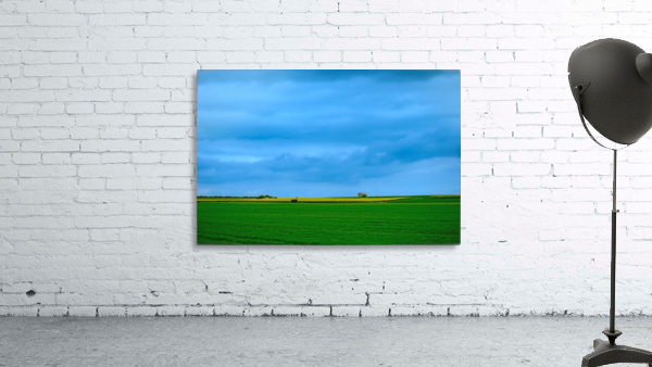 Painted Fields - 2017 Gallery Artwork of the Year - Minimalism