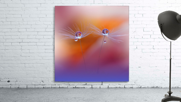 Two Worlds by Juliana Nan
