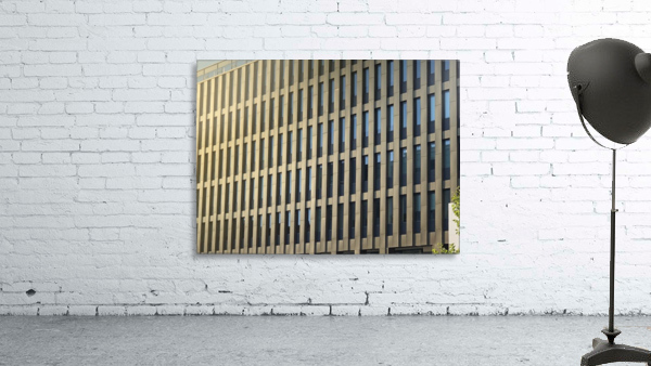 buildings windows