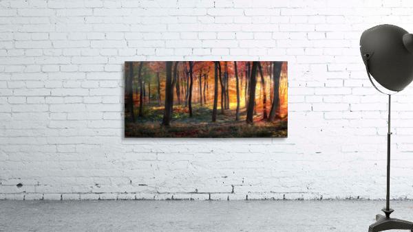 Autumn Woodland Sunrise