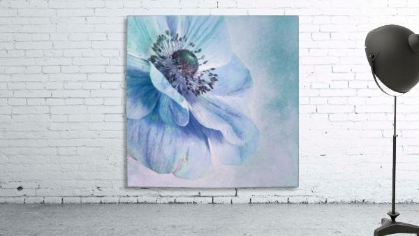 Shades of Blue by Priska Wettstein