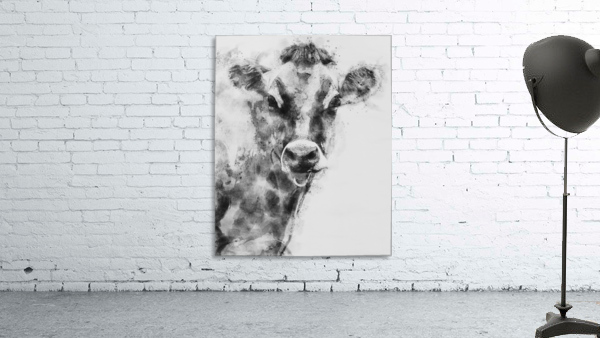 Dairy Cow Black and White
