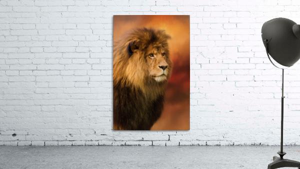 Lion Legacy - Lion Art by Jordan Blackstone