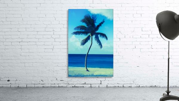 palm color 6