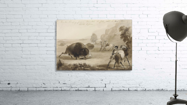 Hunters Escaping from a Wounded Buffalo, While He Tears Their Clothes to Pieces