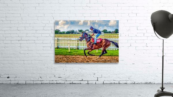 Racehorse09