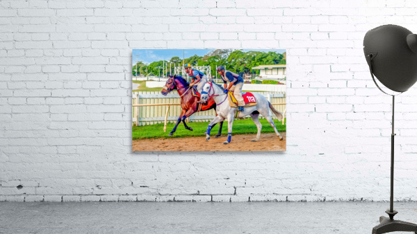 Racehorse08