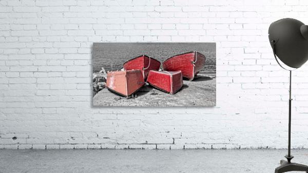 Red Dorries