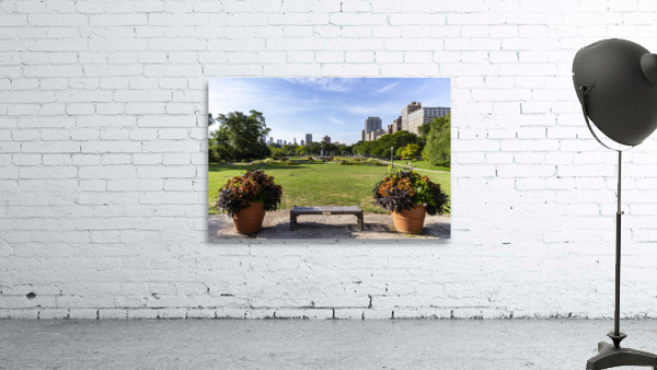 Look Through Lincoln Park