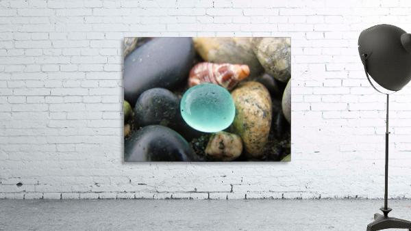 Sea Glass and Seashell
