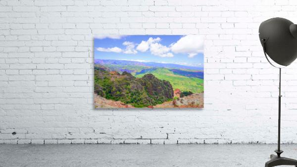 Waimea Canyon Area in the Puu Ka Pele Forest Reserve on the Island of Kauai Hawaii