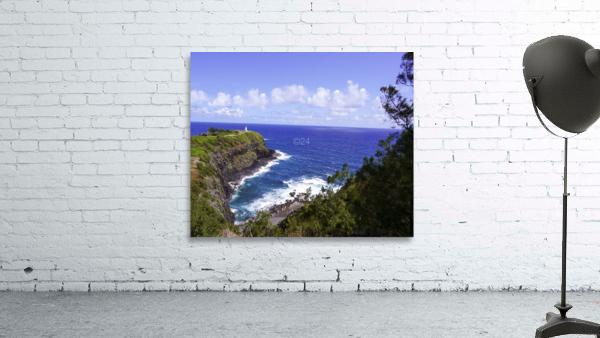Spring at Kilauea Lighthouse on the Island of Kauai