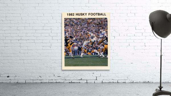 1982 Washington Husky Football Poster