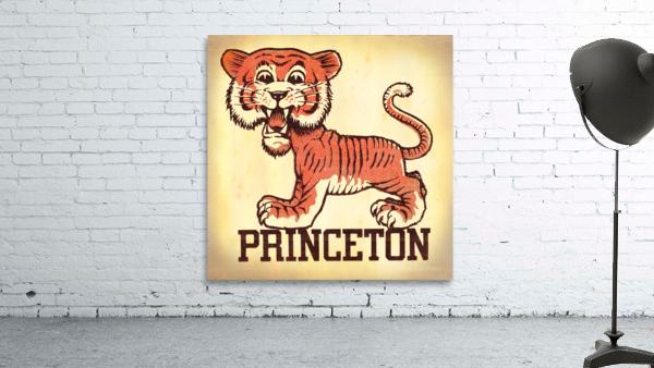 Vintage Fifties Princeton Tiger Remix Art